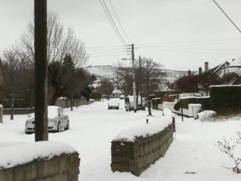 snowjan1008