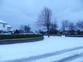 snowjan1006