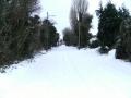 snowjan1009